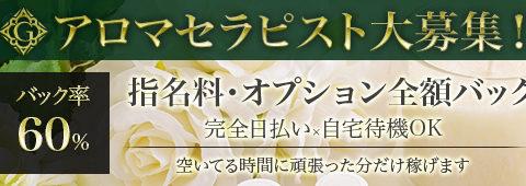 healing spa GINZA~ヒーリングスパ ギンザ 求人画像