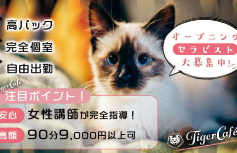Tiger Cafe〜タイガーカフェ 求人画像