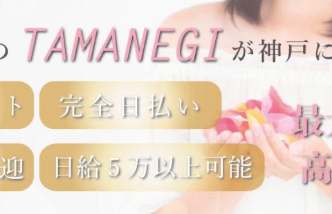 メンズエステ タマネギ 神戸店 求人画像