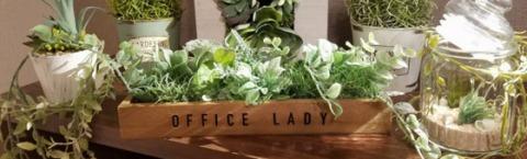 office lady-オフィスレディ 求人画像