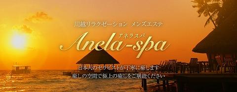川越 Anela-spa~アネラスパ 求人画像