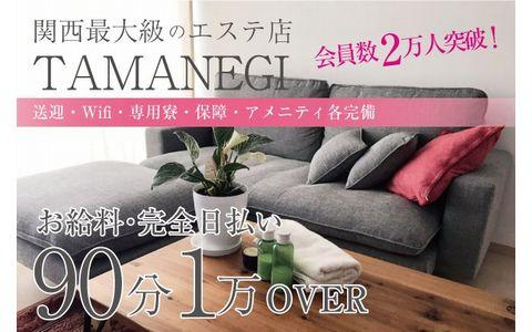 TAMANEGI(タマネギ) 奈良店 求人画像