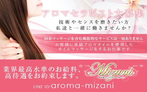 Mizani(ミザーニ) 求人画像