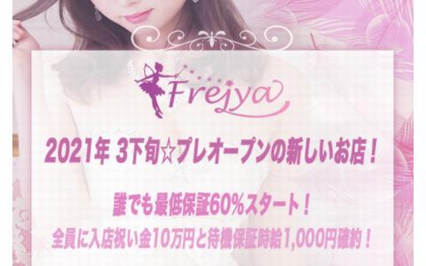 Frejya(フレイヤ) 求人画像