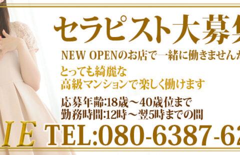 新宿SERIE~セリエ~ 求人画像